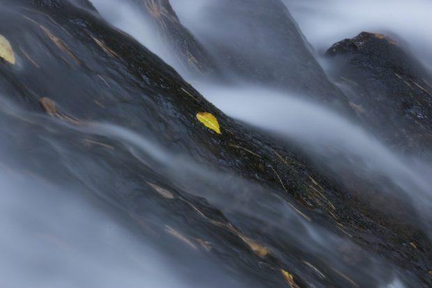 A Secret Streamlet by Frank Horvat