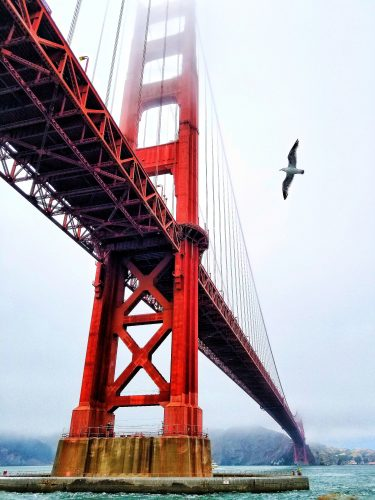 Golden Gate Bridge (Photo by Robert Trombetta on Unsplash)
