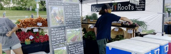 Nourished Roots with Haley and Paddy at the farmer's market