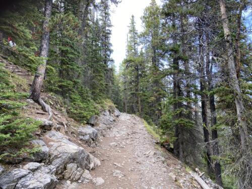 Hiking up Sulphur Mountain