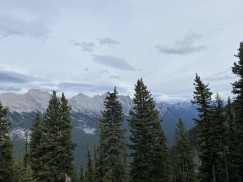On top of Sulphur Mountain