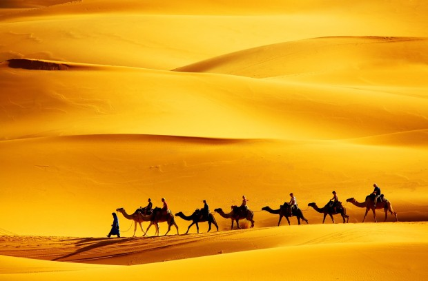 Desert Scenes by Frank Horvat