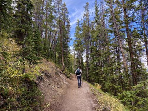 Sulphur Mountain Path